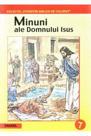 Minuni ale Domnului Isus