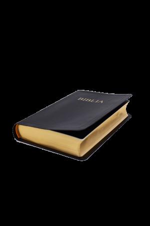 Biblia 052CF auriu
