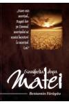 Evanghelia după Matei