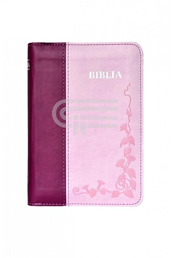 Biblia 046 P - roz