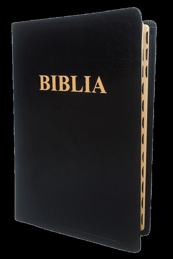 Biblia - ediție de lux 087 TI