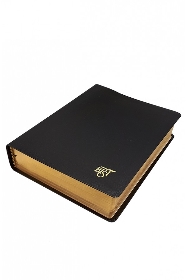 Biblia BISI