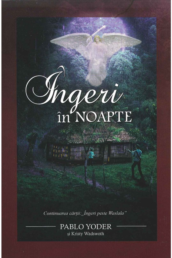 Îngeri în noapte - cartea 2