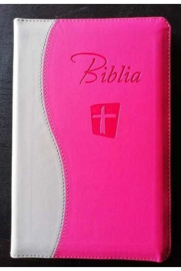 Biblia NTR SBIR roz-gri